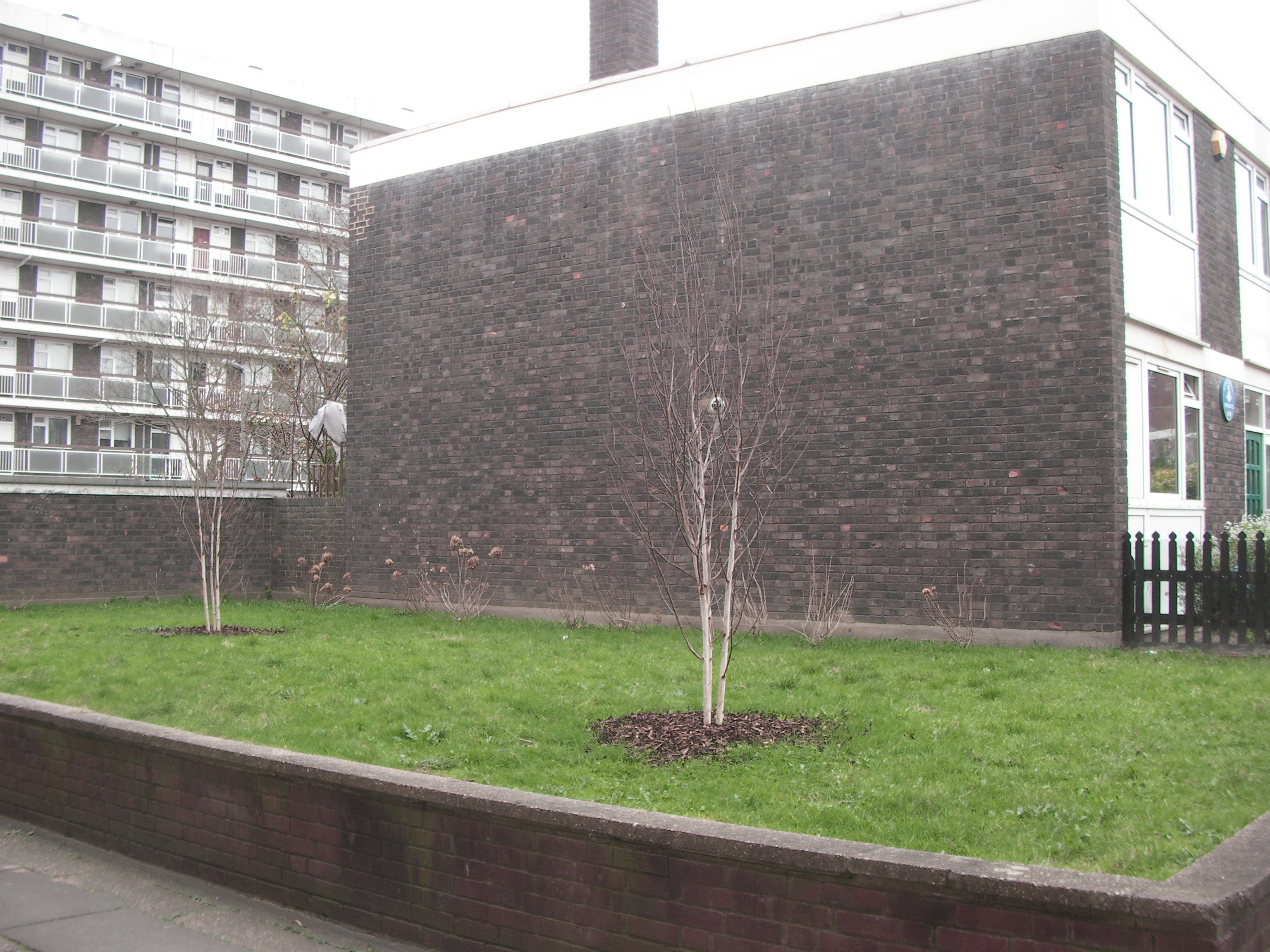 Searles Close Raised Green Space