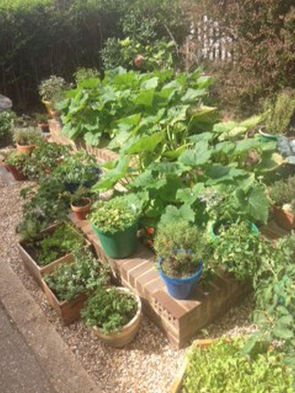 GYO Front Garden - enlarged120822